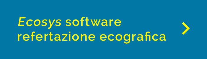 banner ecosys software